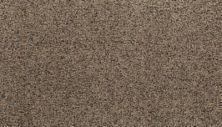Karastan Sophisticated Nature Hickory Tan 43703-9779
