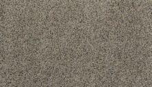 Karastan Sophisticated Nature Stardust 43703-9925