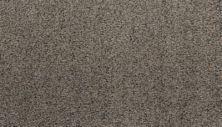 Karastan Sophisticated Nature Truffle 43703-9942