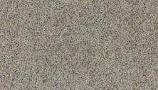 Mohawk Delightful Shades II Perfect Taupe 3G31-931