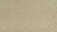 Karastan Modern View Bare Necessities 43721-9748
