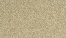 Karastan Modern View Renoir Bisque 43721-9768