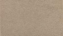 Mohawk Soft Aesthetic I Picnic 3G22-908