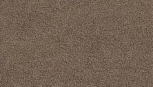 Mohawk Soft Aesthetic II Perfect Taupe 3G23-829