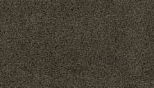 Mohawk Lavish Tradition Silhouette 3G58-978