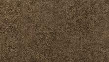 Karastan Lavish Indulgence Brushwood 3G71-9863