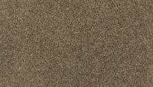 Mohawk Sophisticated Tones Blended Tan 3H37-824