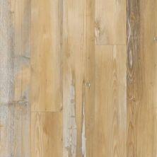 Pergo Extreme Wood Originals Single Strip Noella PT009-510