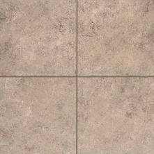 Mohawk Pantego Bay Porcelain Brown Shell T772-PB52-12×12-FieldTile-Porcelain