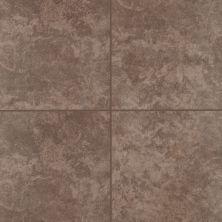 Mohawk Astello Wall Ceramic Brown T810F-AN36-12×9-FieldTile-Ceramic