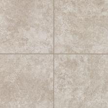 Mohawk Astello Floor Ceramic Grey T810F-AN35-18×18-FieldTile-Ceramic