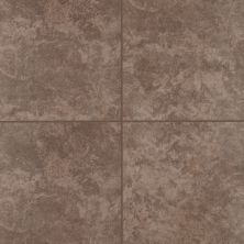 Mohawk Andela Floor Ceramic Brown T810-AN36-18×18-FieldTile-Ceramic