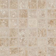 Mohawk Steppington Stone and Slate Baronial Beige-Traditional Taupe Blend T530-ST95-2×2-FieldTile-StoneandSlate