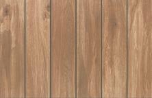Mohawk Dabney Park Ceramic Cinnamon Barnwood T838P-DV04-24×6-FieldTile-Ceramic