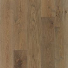 Mohawk Metropolitan Lights City Loft Oak MEM04-61