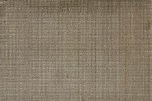 Illuminations Nourison  Highlights Ilm01 Beechwood Broadloom ASH 1-ILM01ASHBR1300WV