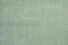 Illuminations Nourison  Highlights Ilm01 Ash Broadloom EMERALD 1-ILM01EMRLDBR1300WV