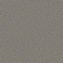 Phenix Pristine Immaculate MC120-919