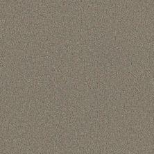Phenix Eccentric Poetic FE506-717