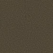 Phenix Eccentric Extreme FE506-888