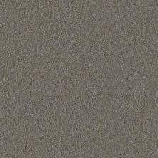 Phenix Eccentric Dreamy FE506-849