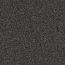 Phenix Eccentric Vivid FE506-989