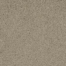 Phenix Kudos FE102-754