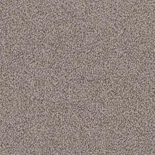 Phenix Expressive MB109-962