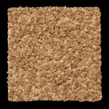 Phenix Solstice Sandbar N176-110