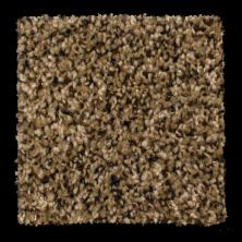 Phenix Solstice Sassy Sand N176-120