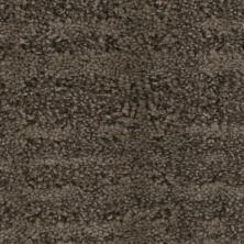 Phenix Bold ST167-667