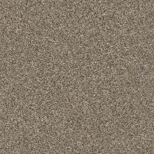 Value Collections Monte Carlo Shaw Floors  Gold Rush 00200-5E433