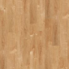 Shaw Floors Vinyl Residential New Market 6 Solana Beach 00240_0145V