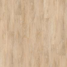 Shaw Floors Resilient Residential New Market 6 Chelsea 00309_0145V