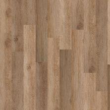 Shaw Floors Resilient Residential New Market 12 Tribeca 00214_0146V