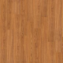Shaw Floors Vinyl Residential New Market 12 Sweet Auburn 00260_0146V