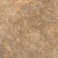 Shaw Floors Resilient Residential Resort Tile Hot Cocoa 00750_0189V