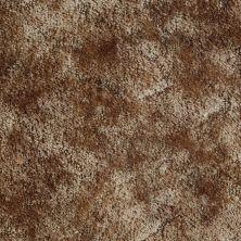 Shaw Floors Mustang II Landslide 63720_01963