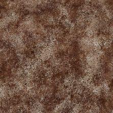 Shaw Floors Mustang II Raisin Bread 63723_01963