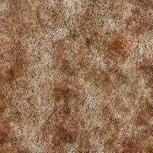 Shaw Floors Mustang II *tandori Tan 63964_01963
