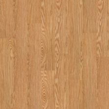 Shaw Floors Vinyl Residential Sumter Plus Dutch 00220_0225V