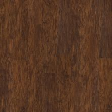 Shaw Floors Vinyl Residential Sumter Plus Foundry 00450_0225V