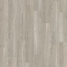 Shaw Floors Vinyl Residential Sumter Plus Shadow 00520_0225V