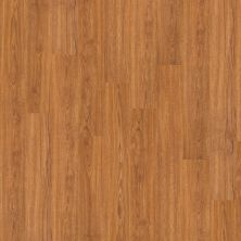 Shaw Floors Vinyl Residential New Market 20 Sweet Auburn 00260_0243V