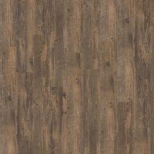 Shaw Floors Resilient Residential Soho Antico 00747_0245V