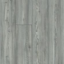 Shaw Floors Resilient Residential Paladin Plus Fresh Pine 05052_0278V