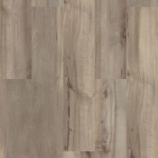 Shaw Floors Resilient Residential Paladin Plus Sea Glass 05092_0278V