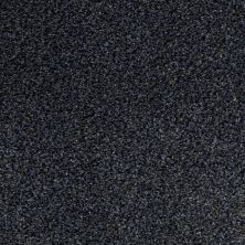 Anderson Tuftex SFA New Direction Lapis Lazuli 00478_02SSF