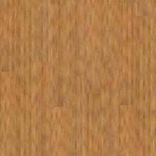 Shaw Floors Vinyl Residential Urbanality 6 Plank Bridgeway 00768_0309V