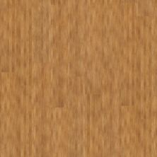 Shaw Floors Vinyl Residential Urbanality 12 Plank Bridgeway 00768_0310V